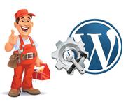 Software Development Maintenance Services Company