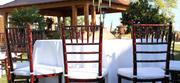 Wholesale Metal Chiavari Chairs Larry Hoffman