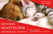 Buy Heartworm Treatment for Dogs - BudgetPetCare